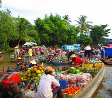 Transfer Ho Chi Minh City to Vinh Long